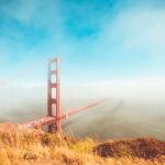 Gestionale integrato con e-commerce - Blog Atlantis Evo