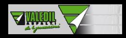 logo Valedil Asfalti